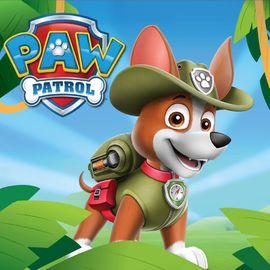 tracker patrulla canina nuevo cachorro
