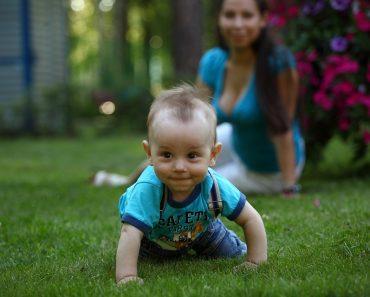 Bebés de 6 a 12 meses
